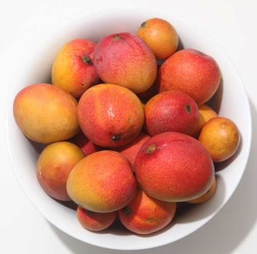 mangoes - cropped